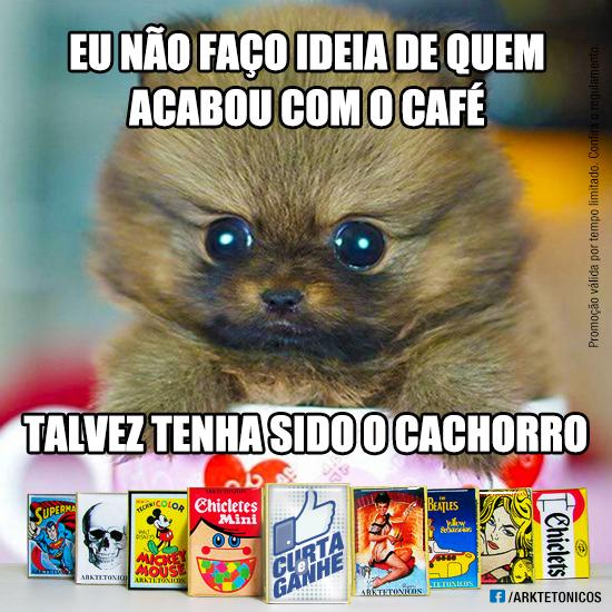 Posts_MatchBox_Gatinho