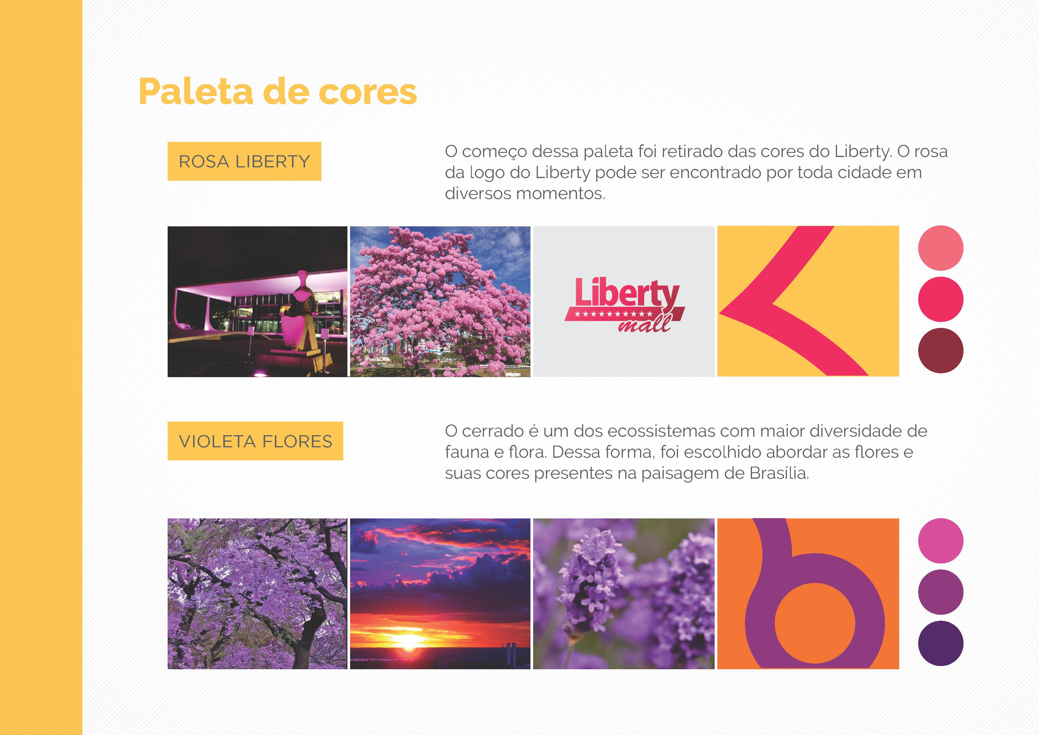 APRESENTACAO-Liberty-2009-_Page_05